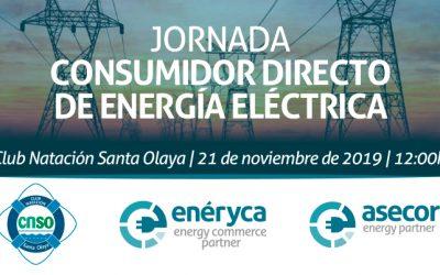 Jornada Consumidor directo de energía  eléctrica